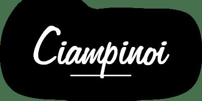 Antermejes Chalet | Ferienwohnungen Ciampinoi
