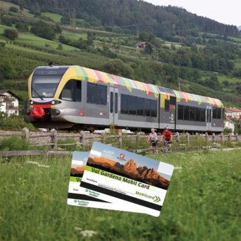 Antermejes Chalet | Val Gardena Mobil Card